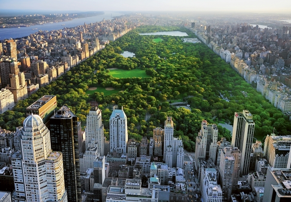 Fototapet 00163 Central Park NY 0