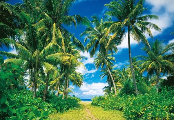 Fototapet 00273 Insula tropicala 0