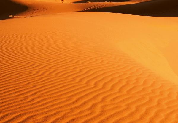 Fototapet 00976 Peisaj din desert 1