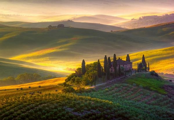 Fototapet 00978 Toscana 0
