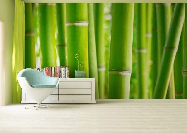 Fototapet FTS 0170 Bamboo 1