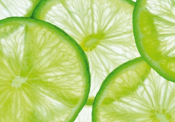 Fototapet FT 0079 Lime