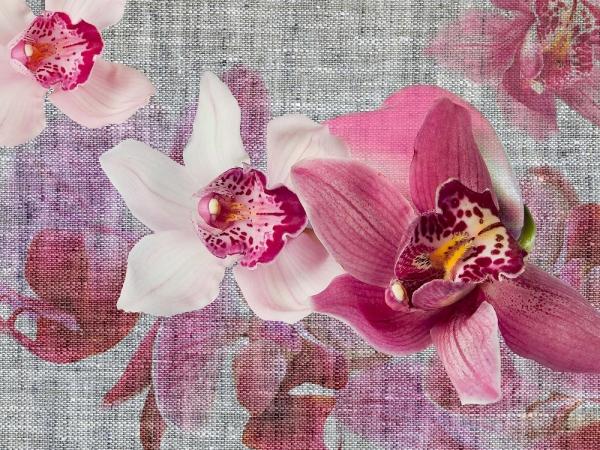 Fototapet FT 1438 Orhidee