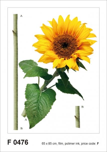 Sticker decorativ F0476 Floarea soarelui
