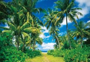 Fototapet 00273 Insula tropicala0