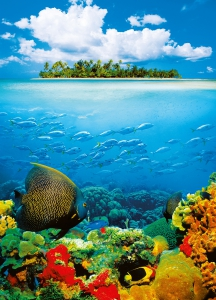Fototapet 00374 Insula tropicala0