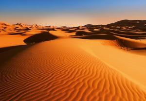 Fototapet 00976 Peisaj din desert0