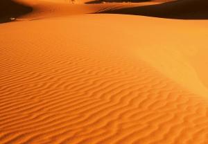 Fototapet 00976 Peisaj din desert1