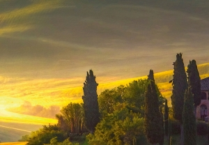 Fototapet 00978 Toscana1