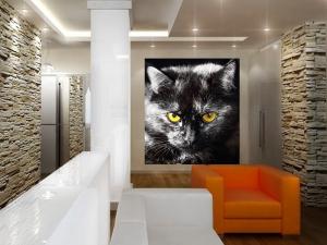 Fototapet FTL 1605 Pisica neagra1