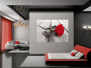 Fototapet FTM 0819 Trandafir rosu1