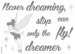 Sticker decorativ 14001 Never stop dreaming1