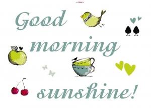 Sticker decorativ 17046 Sunshine1