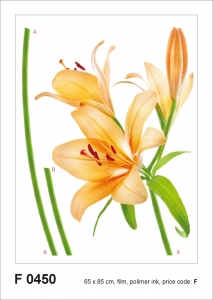 Sticker decorativ F0450 Crin orange0