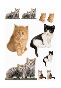 Sticker decorativ 17010 Kitty1