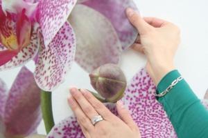Sticker decorativ 17702 Orhidee2