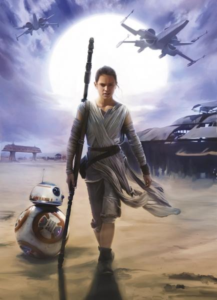Fototapet 4-448 STAR WARS Rey