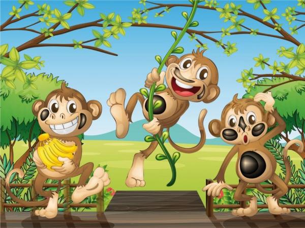 Fototapet FT 1458 Trei maimute