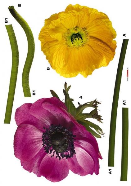 Sticker decorativ 17012 Anemone