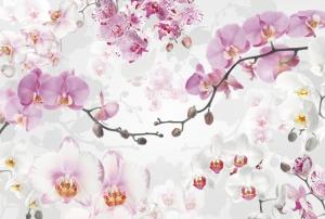 Fototapet XXL4-032 Orhidee mov