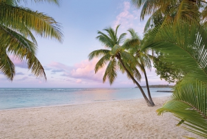 Fototapet XXL4-528 Dimineata pe plaja