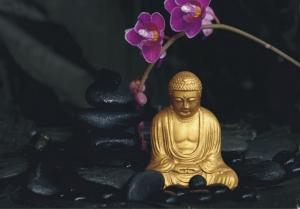 Fototapet FT 0193 Buddha si orhidee