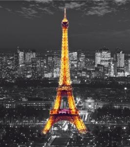 Fototapet FTL 1635 Eiffel noaptea